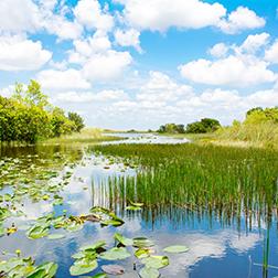 South Florida Water